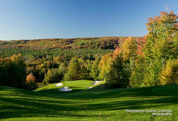 Michigan - Treetops