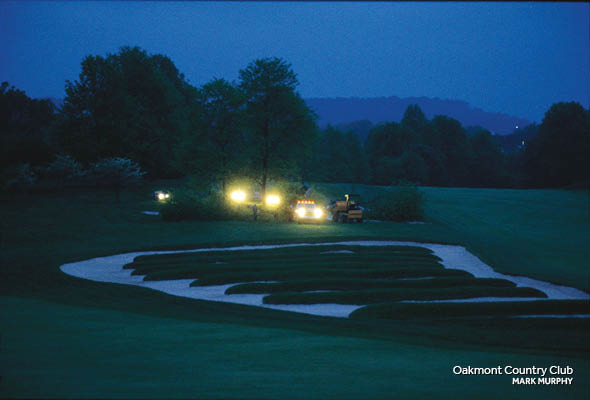 Less is More: Golf Course Tree Removal