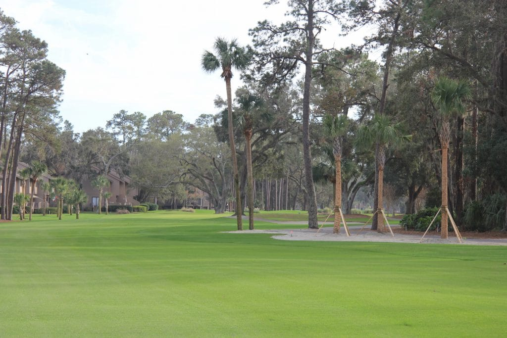 Hilton Head Island Golf Recovers after Hurricane Matthew | 60S Today