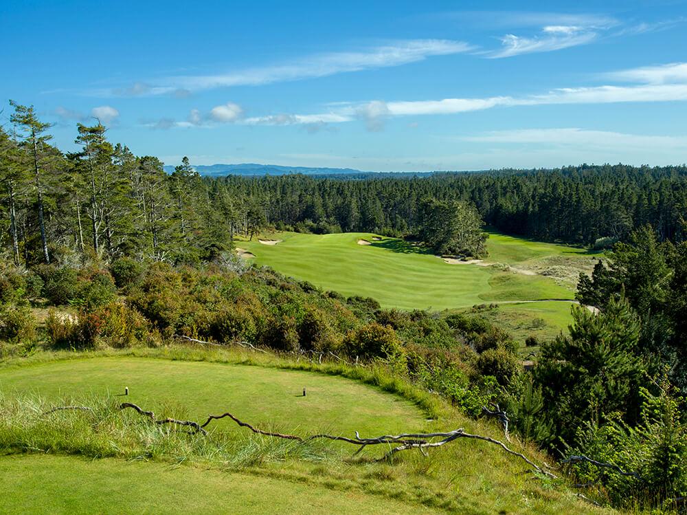 Golf's Polarizing Par Fours